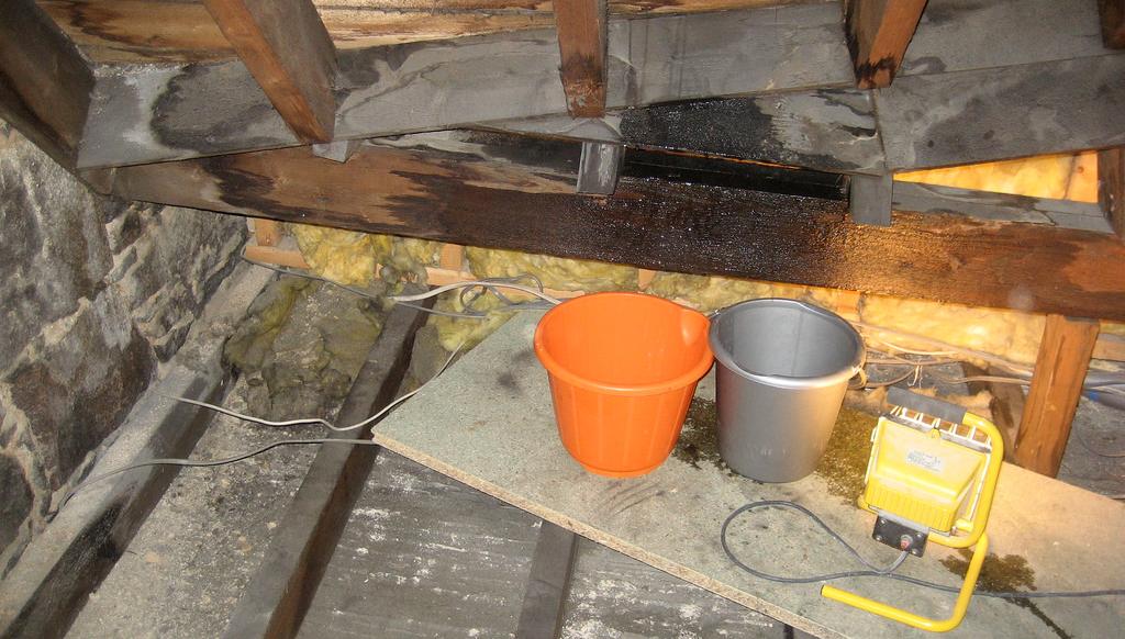 Roof Leaking - Lundberg-Specialty Roofing